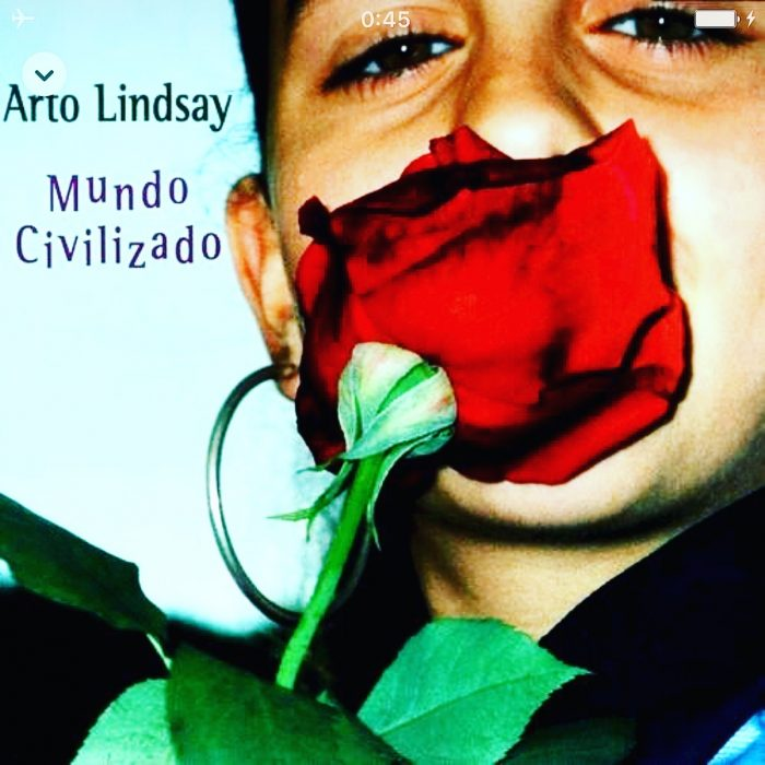 Art Lindsay / Erotic City(Gut 1996)